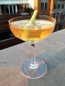 Aquavite Celery Martini
